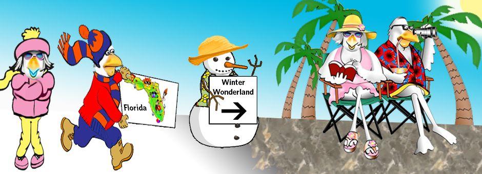 Always Available snow bird Service